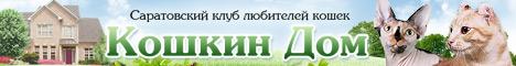 """Саратовский клуб любителей кошек """"Кошкин дом"""""""